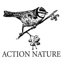 Action_nature.jpeg