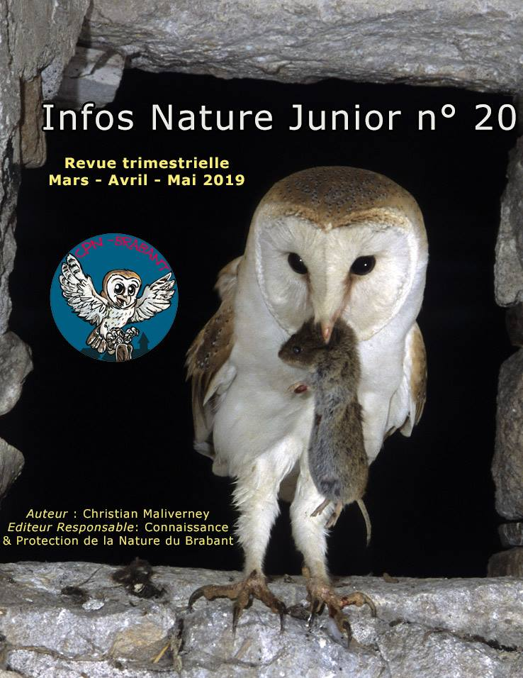INFOS_NATURE_JUNIOR__N_20.jpg