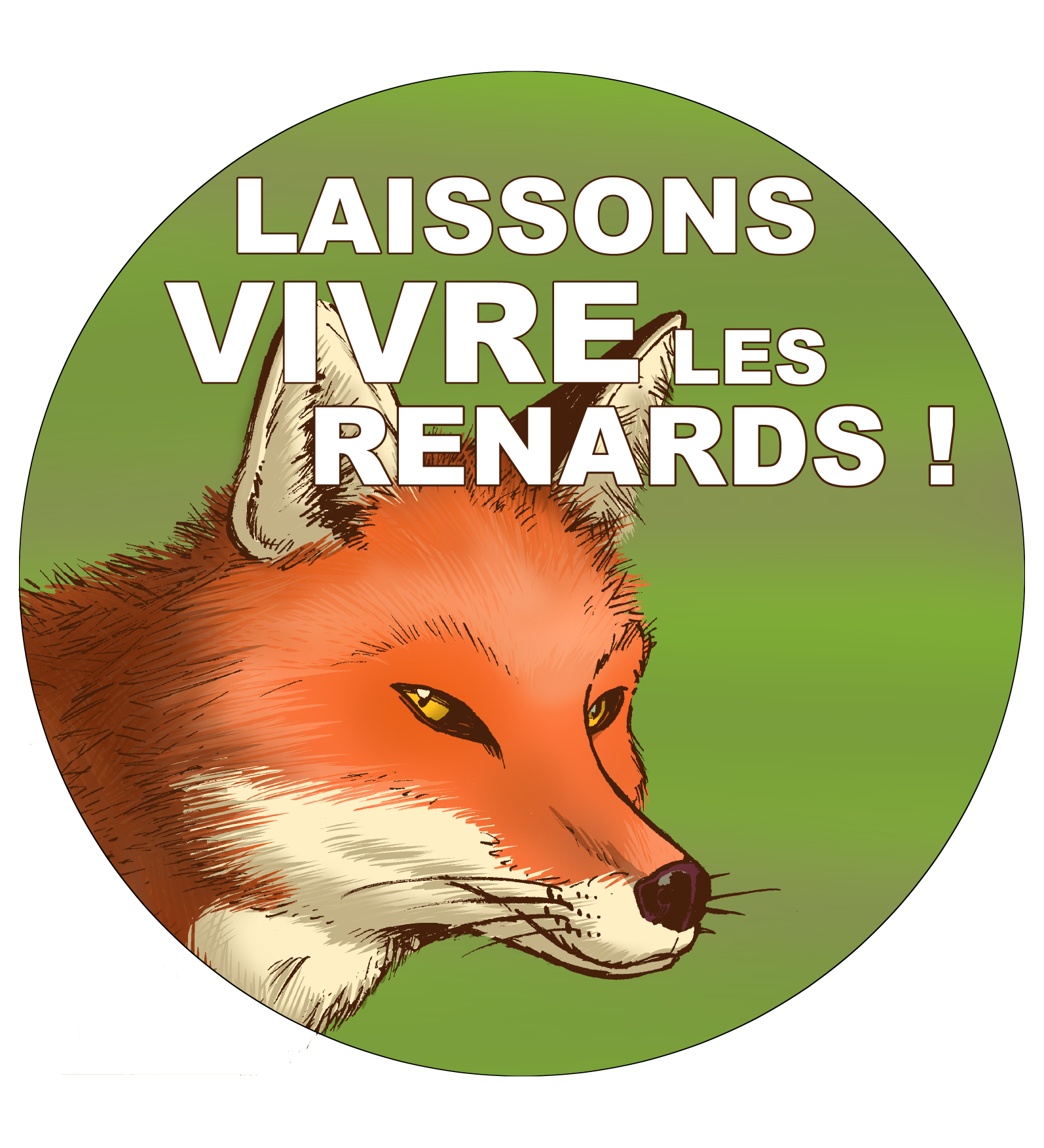 Renard_-_Pins_FR.jpg