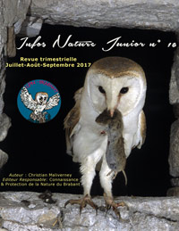 infosnaturejunior16.jpg